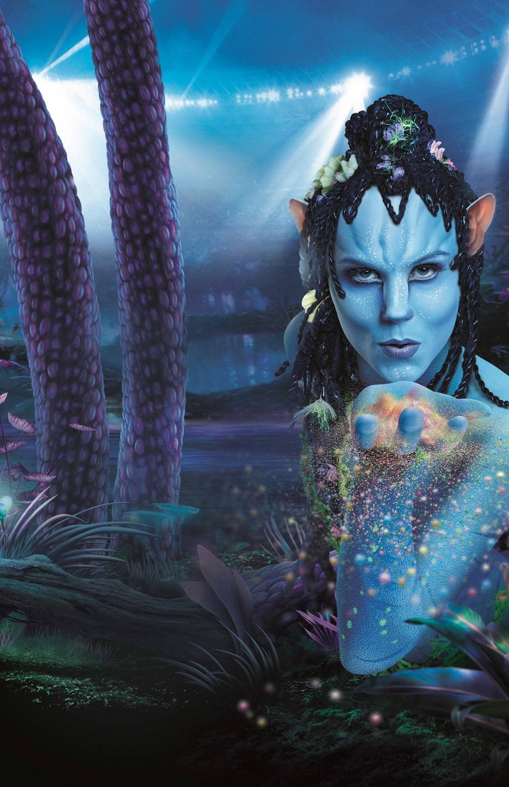 cirque du soleil toruk  Buy Cirque du Soleil: TORUK - The First Flight World Tour 2018 in ...