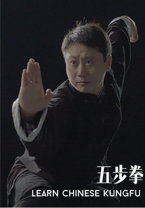 Learn Chinese Kungfu