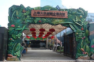 Shanghai Wild Insect Museum