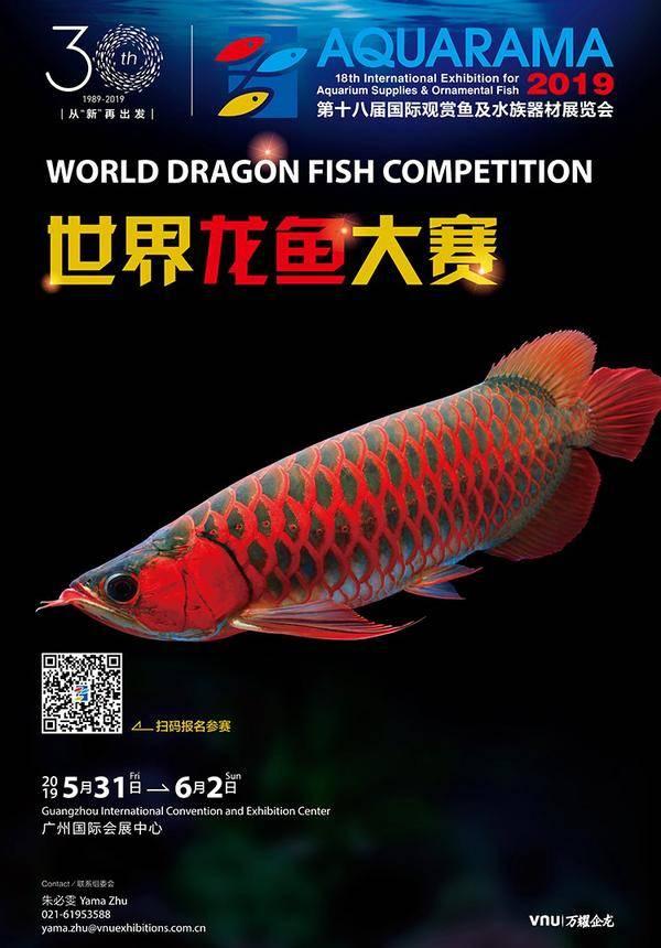 Aquarama World Dragon Fish Competition