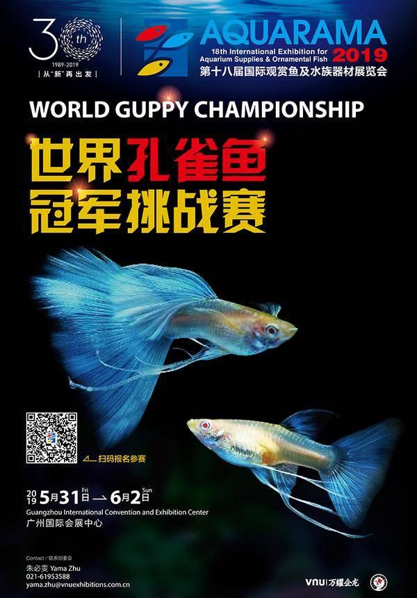 Aquarama World Guppy Championship