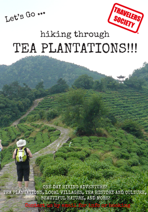 Travelers Society: Let's go...hiking through Tea Plantations! (March 30)