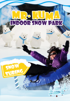 Indoor Snow Park @ Mr.Kuma