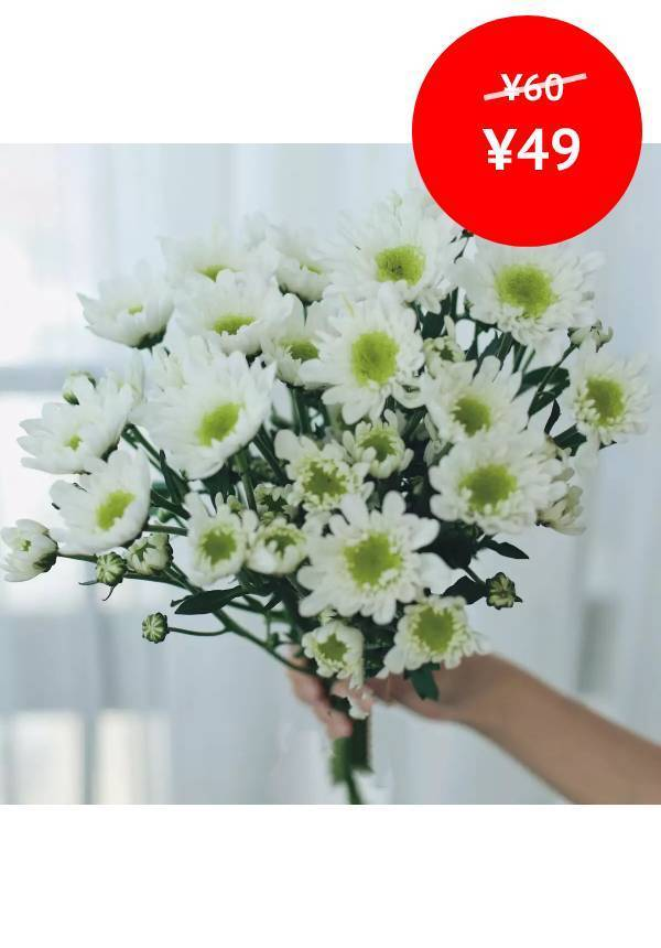 10 White Chrysanthemum Sprays